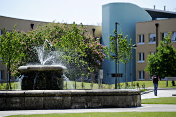 The SBE and Hazlerigg fountain